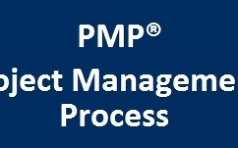 (PMP®) Project Management Processes based on PMBOK 6th Edition